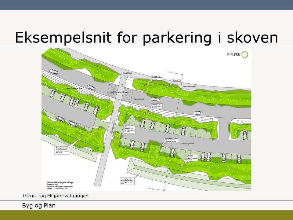 Eksempelsnit for parkering i skoven