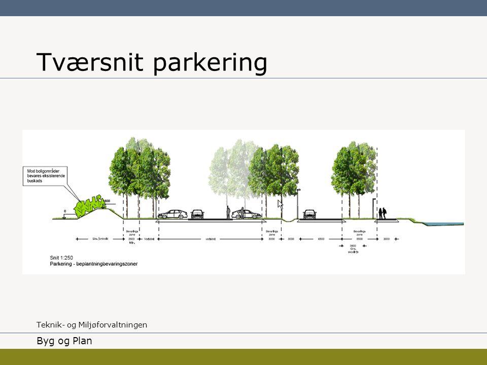 Tværsnit parkering Byg og Plan