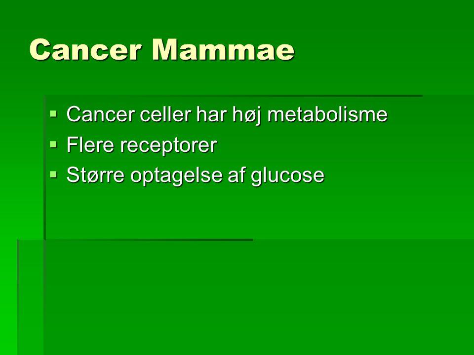 Cancer Mammae Cancer celler har høj metabolisme Flere receptorer