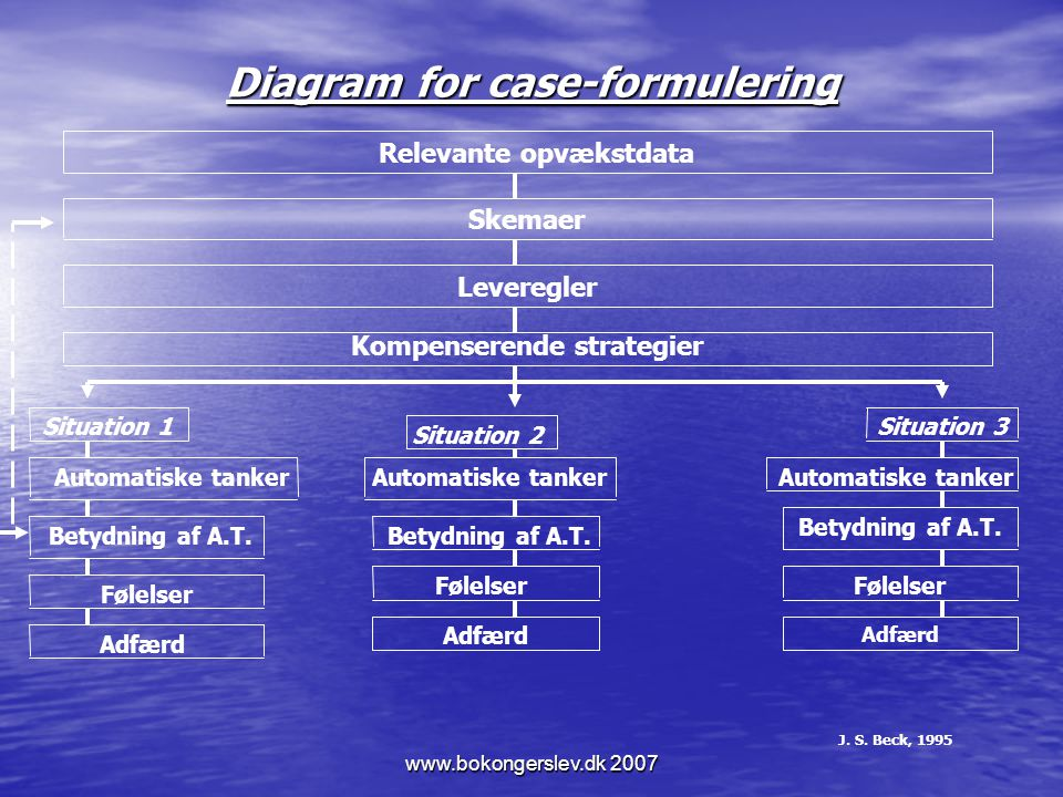 Diagram for case-formulering