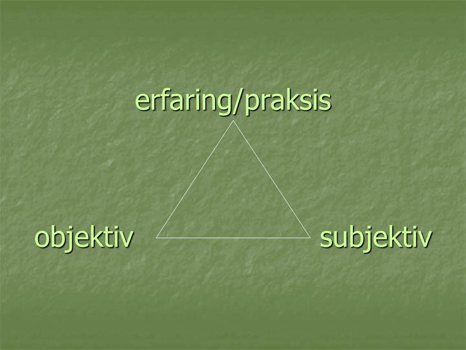 erfaring/praksis objektiv subjektiv