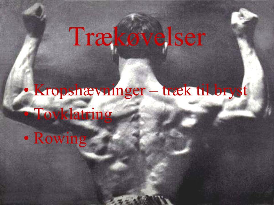 Trækøvelser Kropshævninger – træk til bryst Tovklatring Rowing