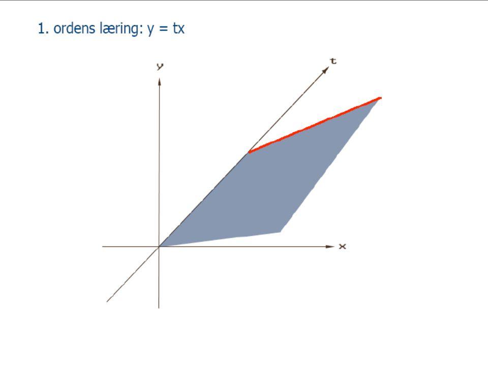 1. ordens læring: y = tx