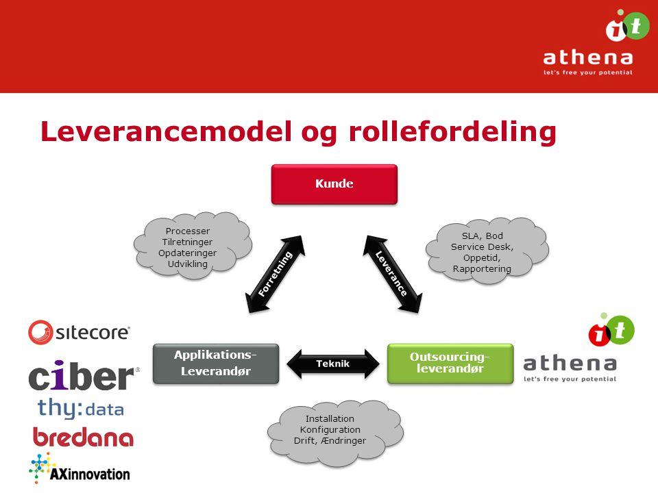 Leverancemodel og rollefordeling