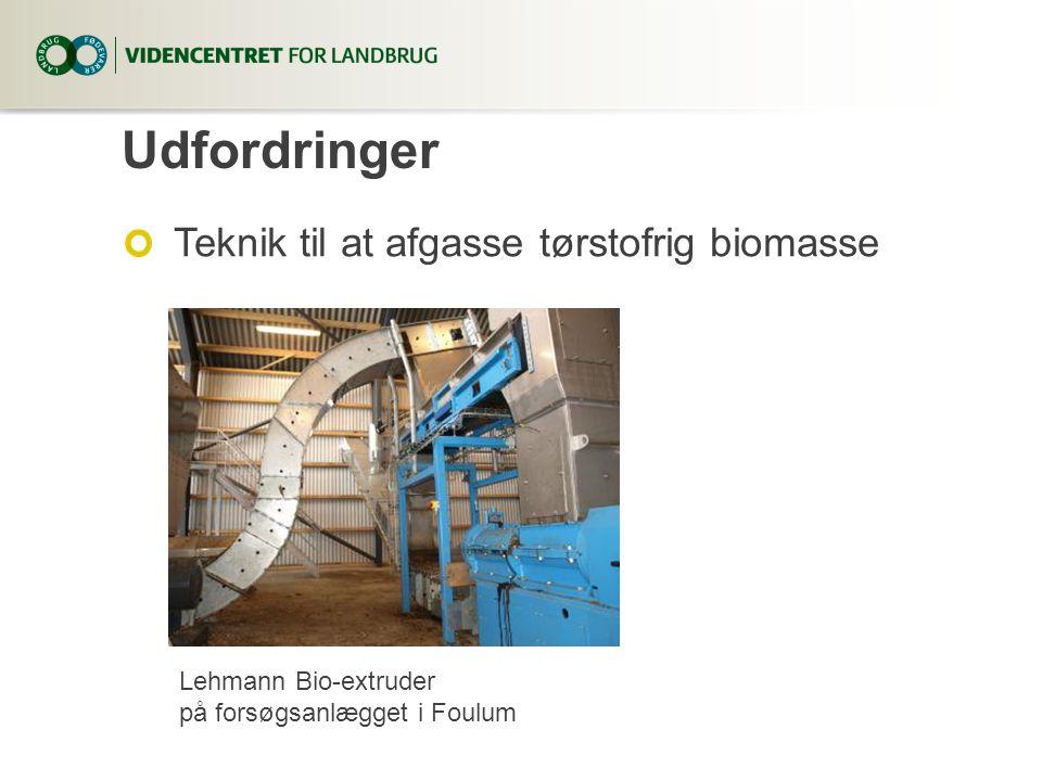 Udfordringer Teknik til at afgasse tørstofrig biomasse