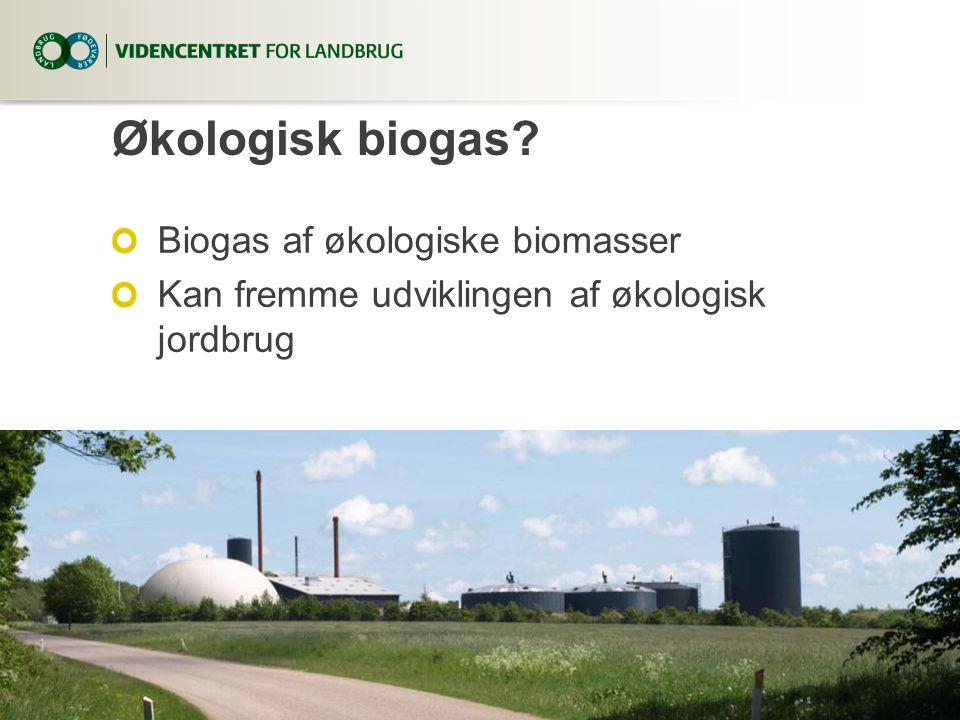 Økologisk biogas Biogas af økologiske biomasser