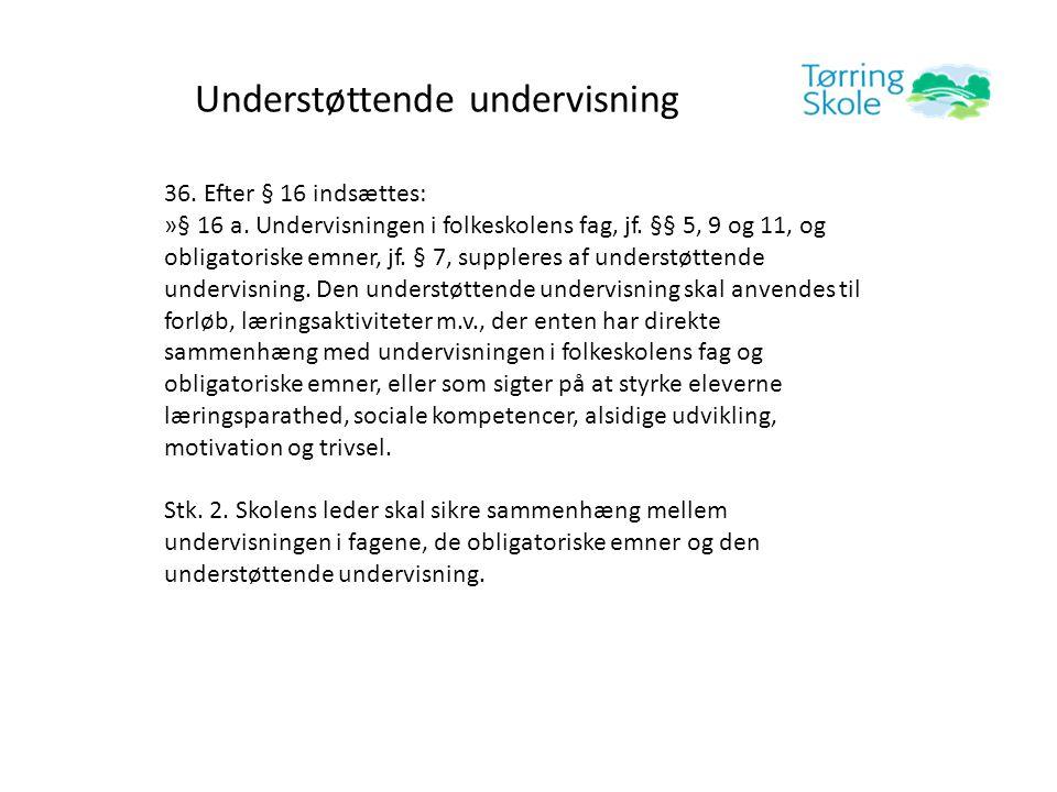 Understøttende undervisning