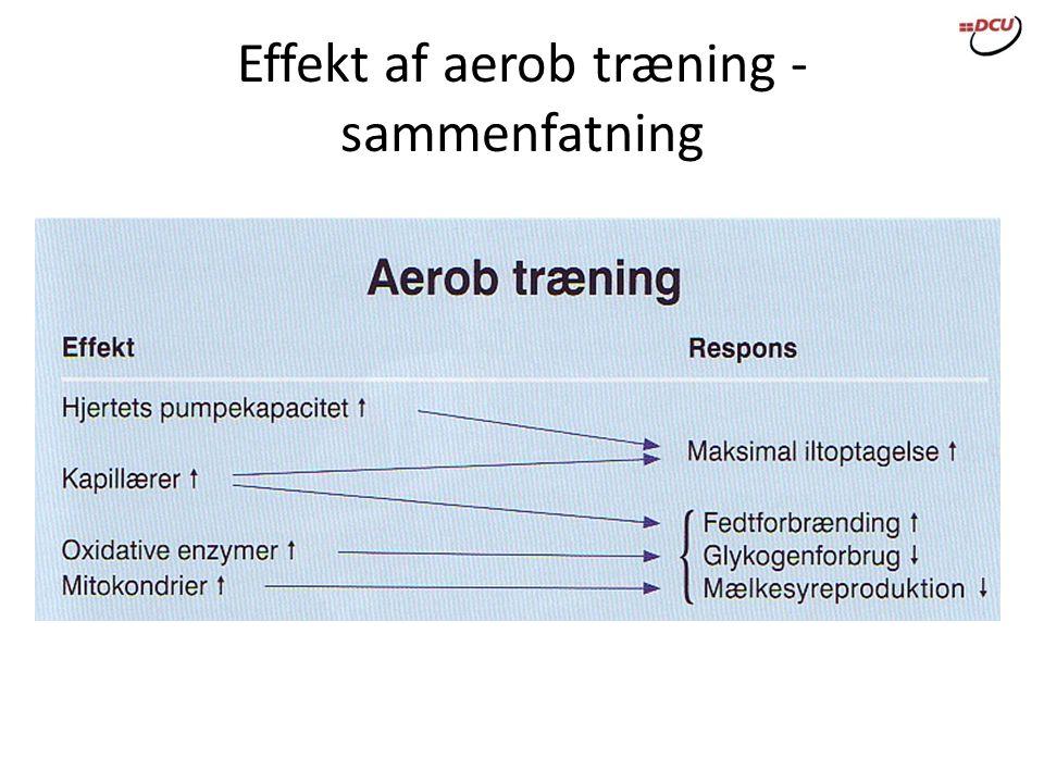 Effekt af aerob træning - sammenfatning