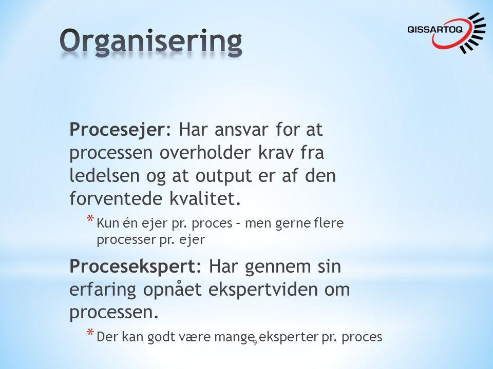 Organisering Procesejer: Har ansvar for at processen overholder krav fra ledelsen og at output er af den forventede kvalitet.