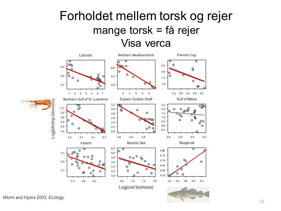 Forholdet mellem torsk og rejer