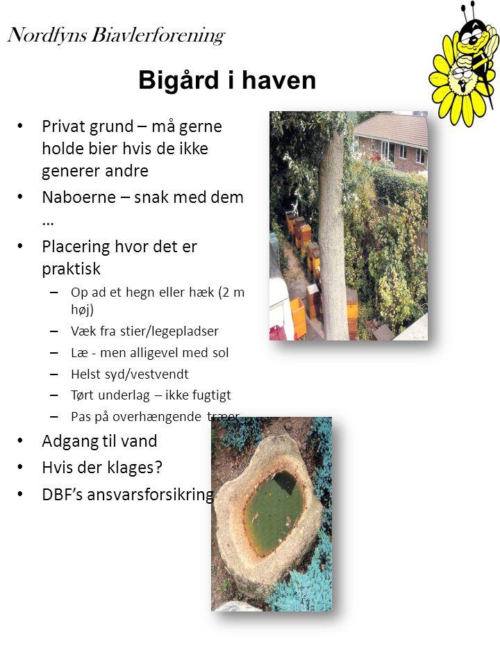 Bigård i haven Privat grund – må gerne holde bier hvis de ikke generer andre. Naboerne – snak med dem …