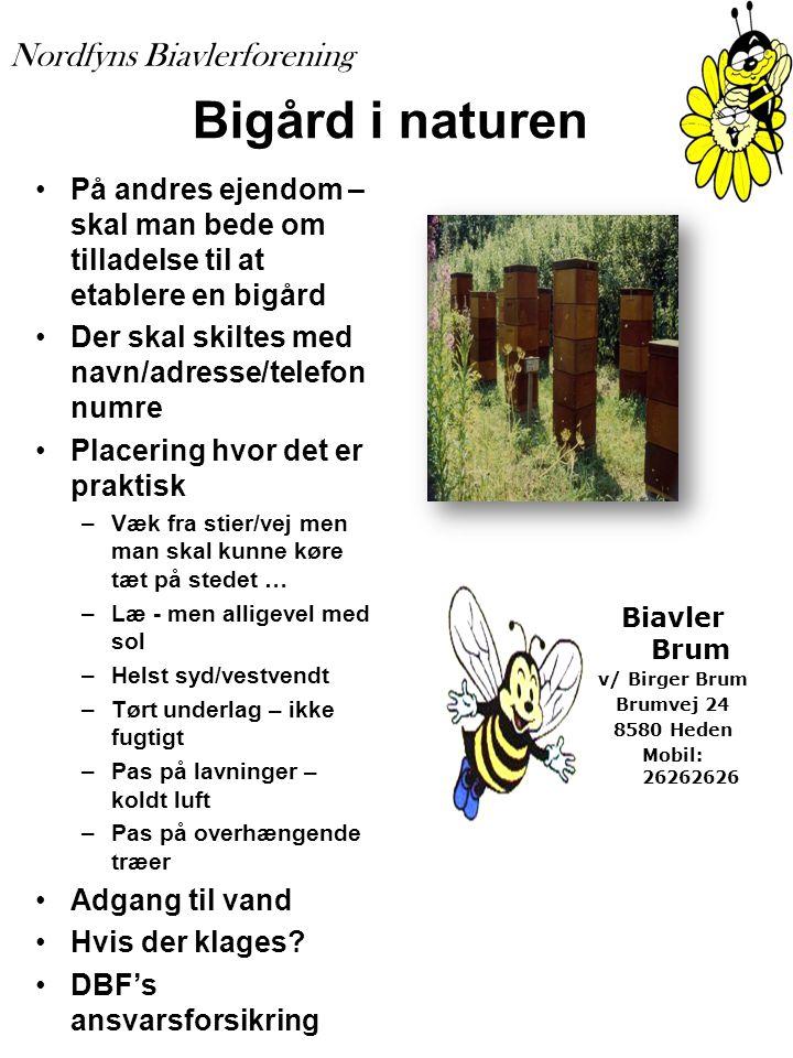 Bigård i naturen På andres ejendom – skal man bede om tilladelse til at etablere en bigård. Der skal skiltes med navn/adresse/telefon numre.