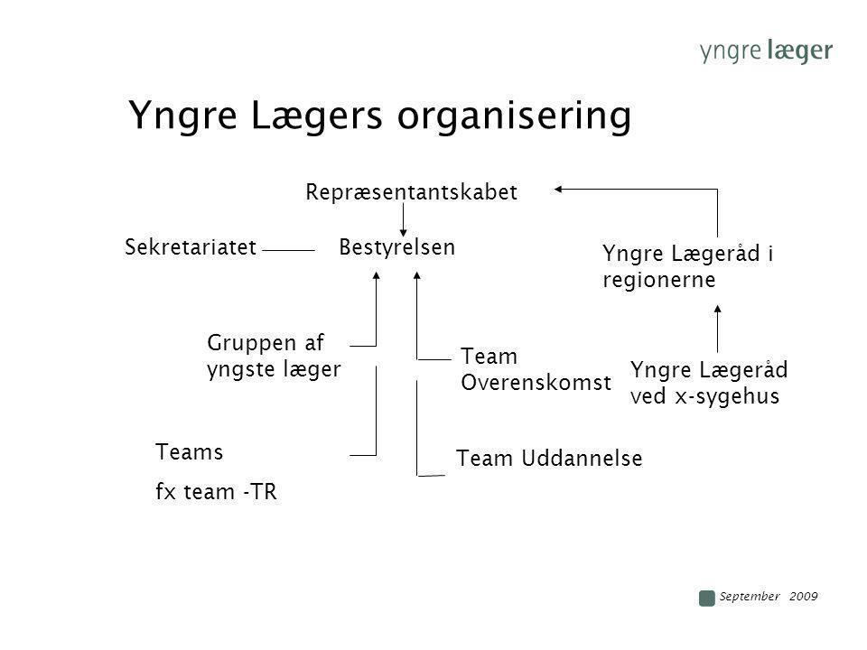 Yngre Lægers organisering
