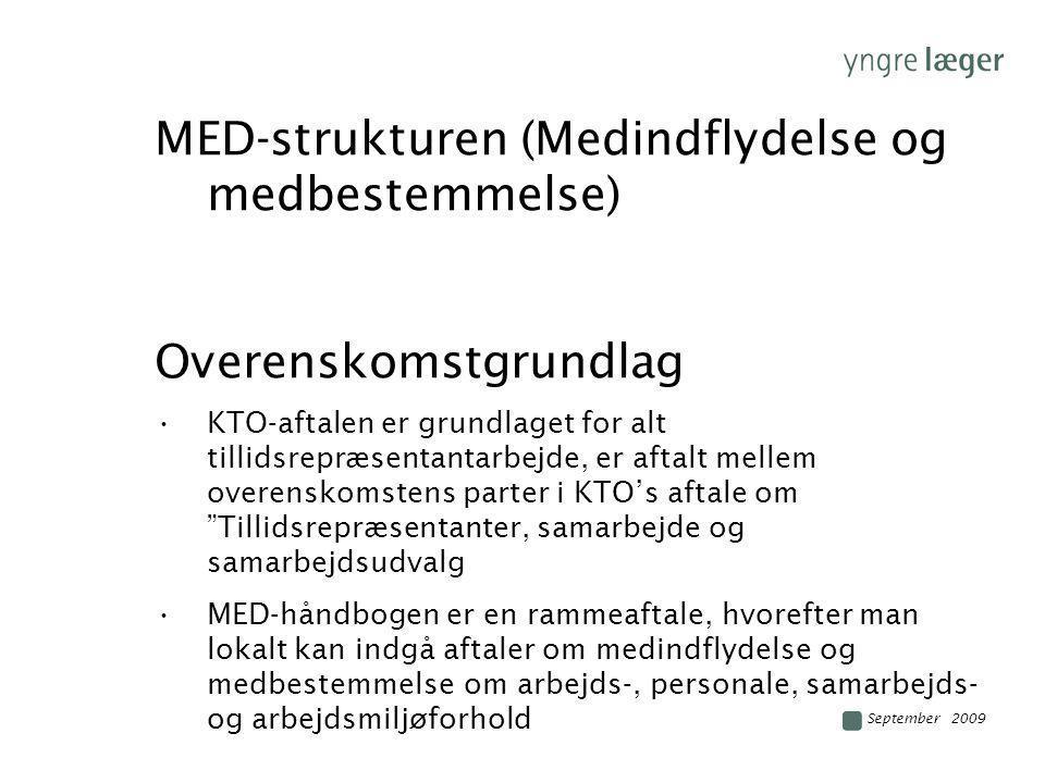 MED-strukturen (Medindflydelse og medbestemmelse)