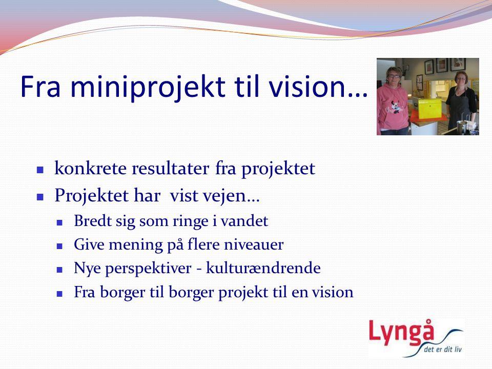 Fra miniprojekt til vision…