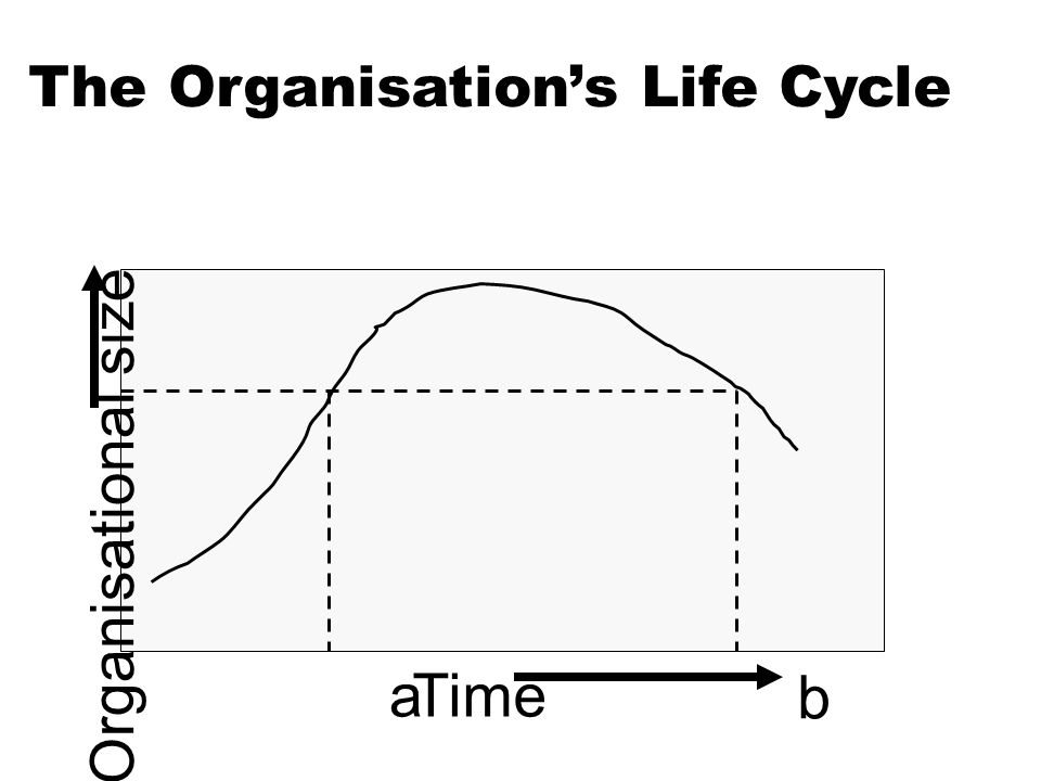 The Organisation's Life Cycle