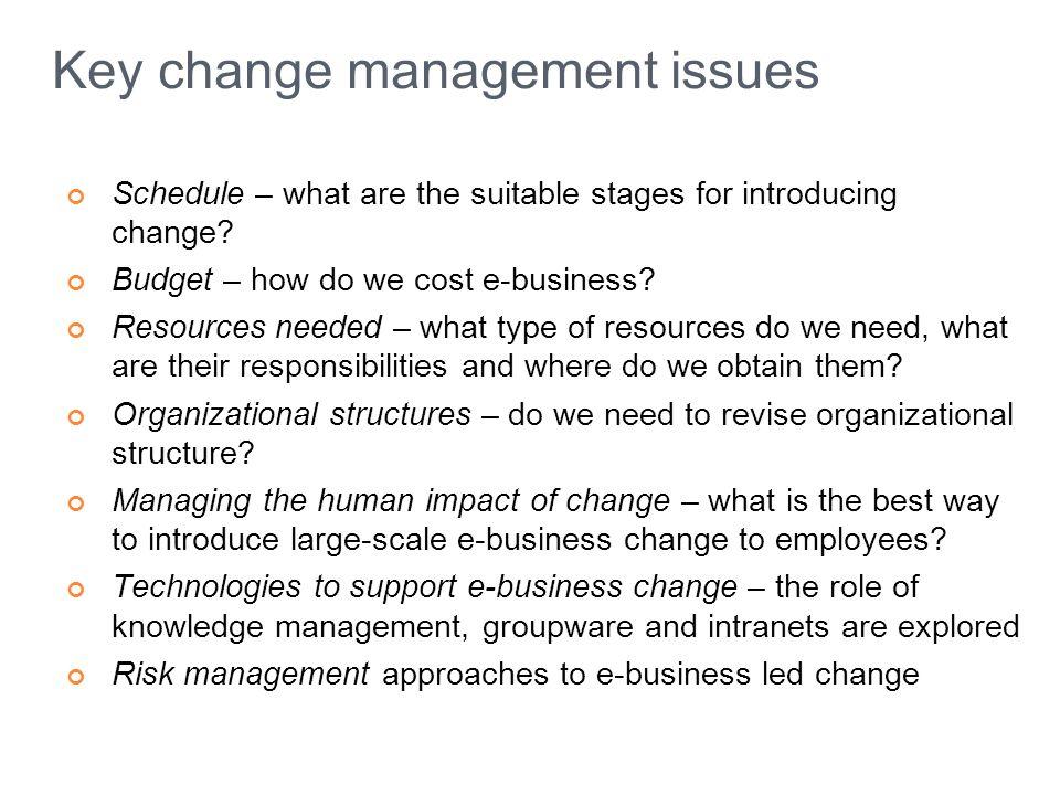 Key change management issues
