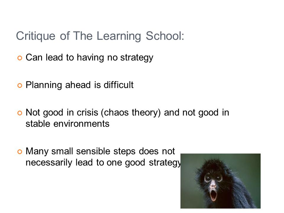 Critique of The Learning School: