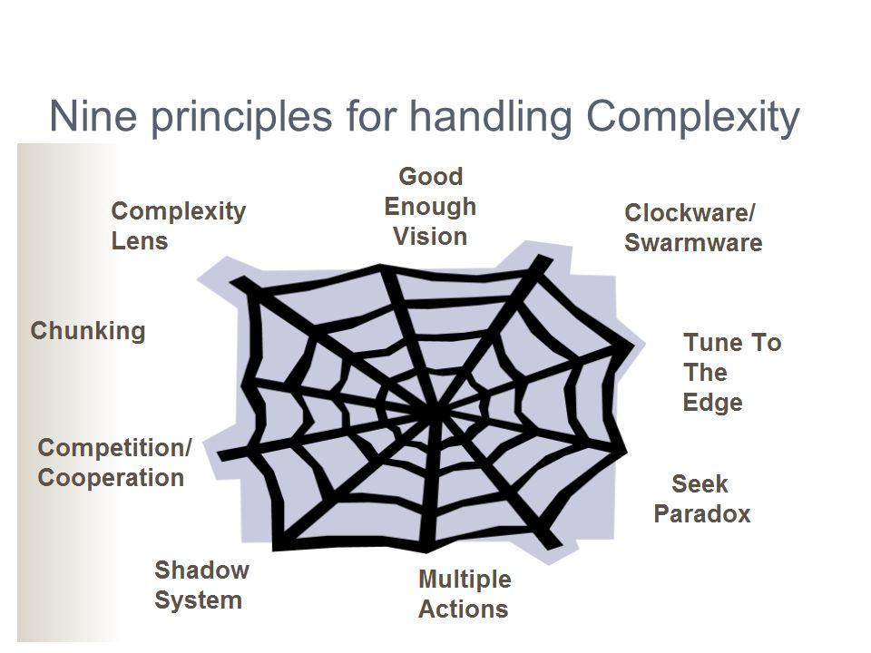 Nine principles for handling Complexity