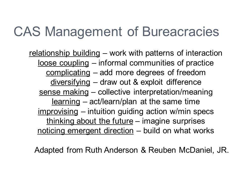CAS Management of Bureacracies