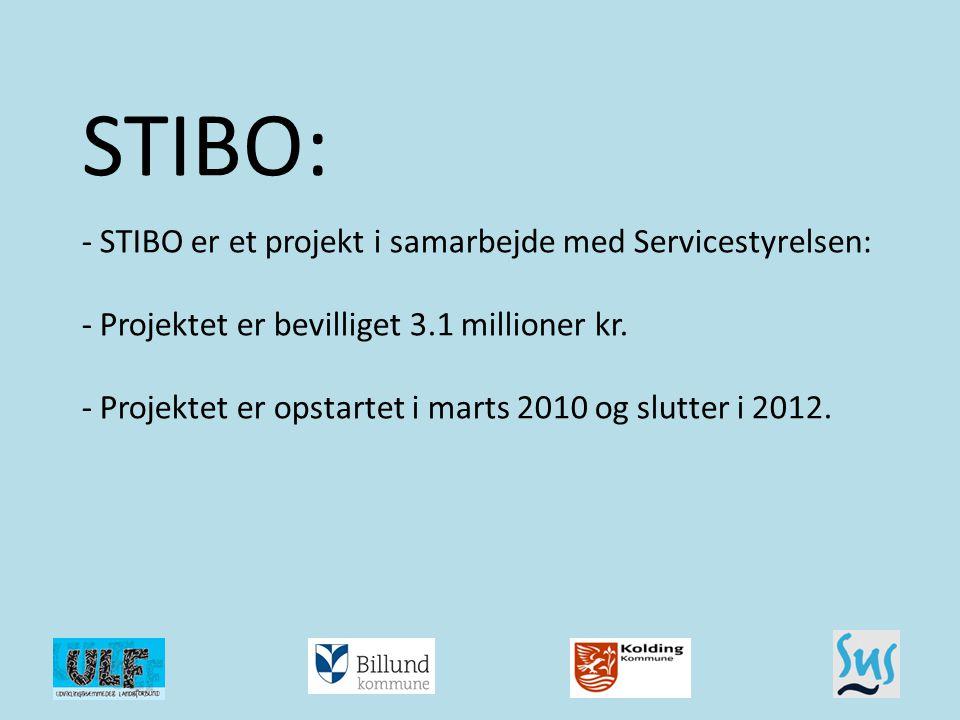 STIBO: - STIBO er et projekt i samarbejde med Servicestyrelsen: - Projektet er bevilliget 3.1 millioner kr. - Projektet er opstartet i marts 2010 og slutter i 2012.