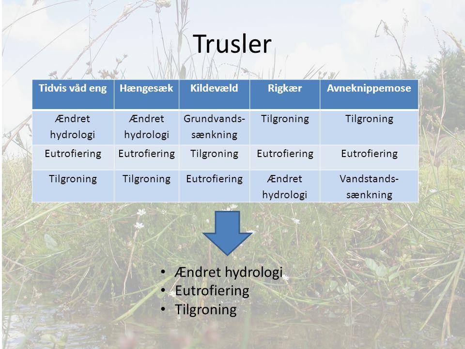 Trusler Ændret hydrologi Eutrofiering Tilgroning Tidvis våd eng