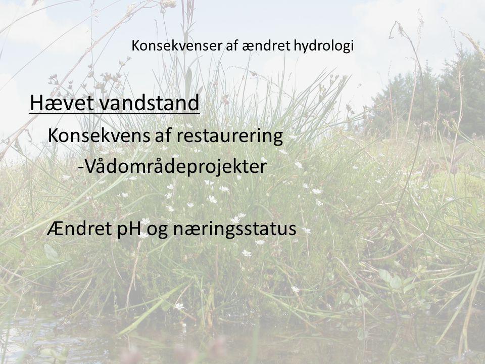 Konsekvenser af ændret hydrologi