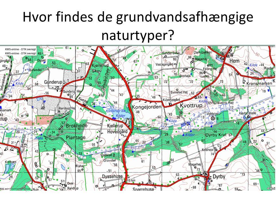 Hvor findes de grundvandsafhængige naturtyper