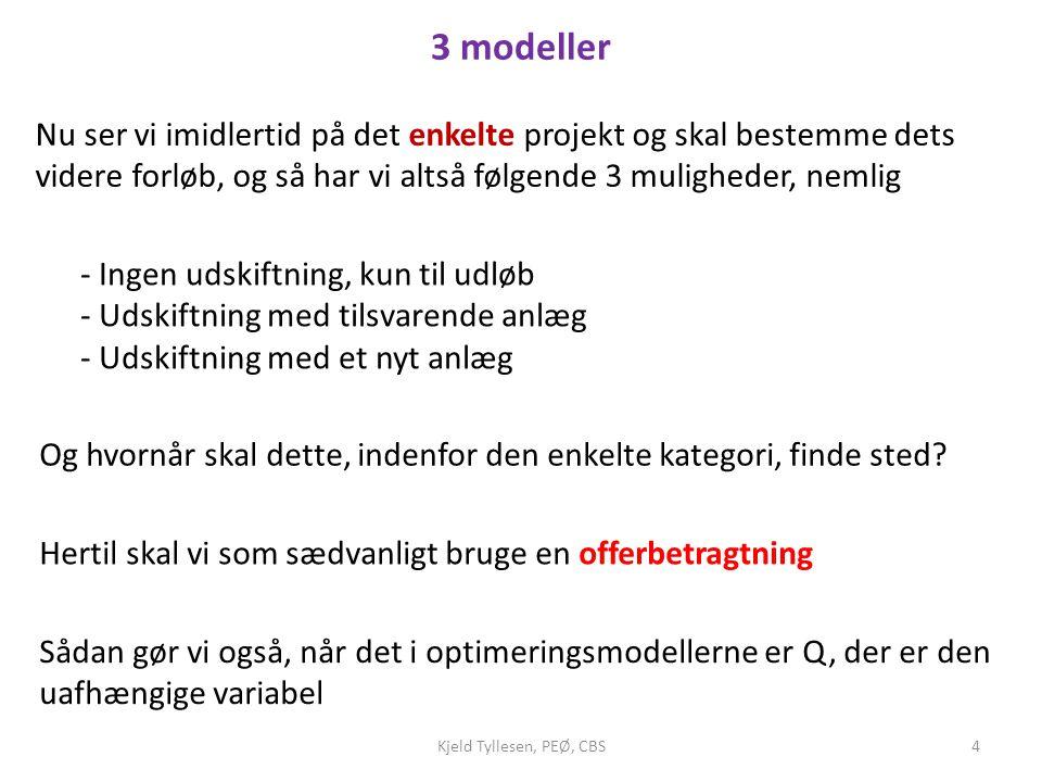 3 modeller Nu ser vi imidlertid på det enkelte projekt og skal bestemme dets videre forløb, og så har vi altså følgende 3 muligheder, nemlig.