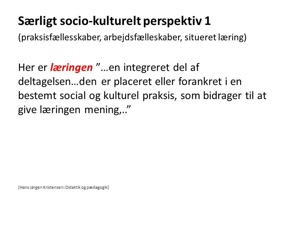 Særligt socio-kulturelt perspektiv 1
