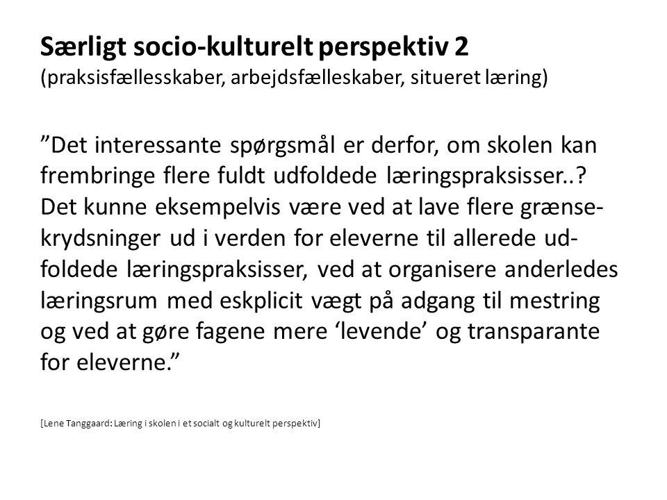 Særligt socio-kulturelt perspektiv 2 (praksisfællesskaber, arbejdsfælleskaber, situeret læring)