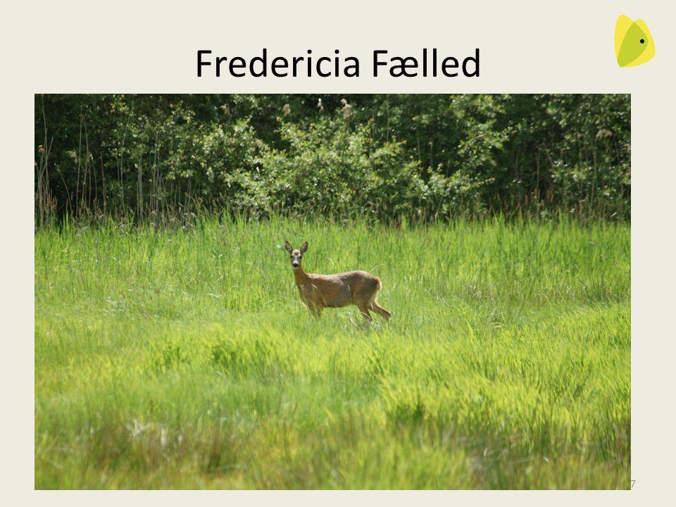 Fredericia Fælled Vi ønsker forsvaret tager sig af Fredericia Fælled