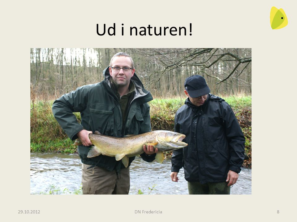 Ud i naturen! Gammelby Mølleå