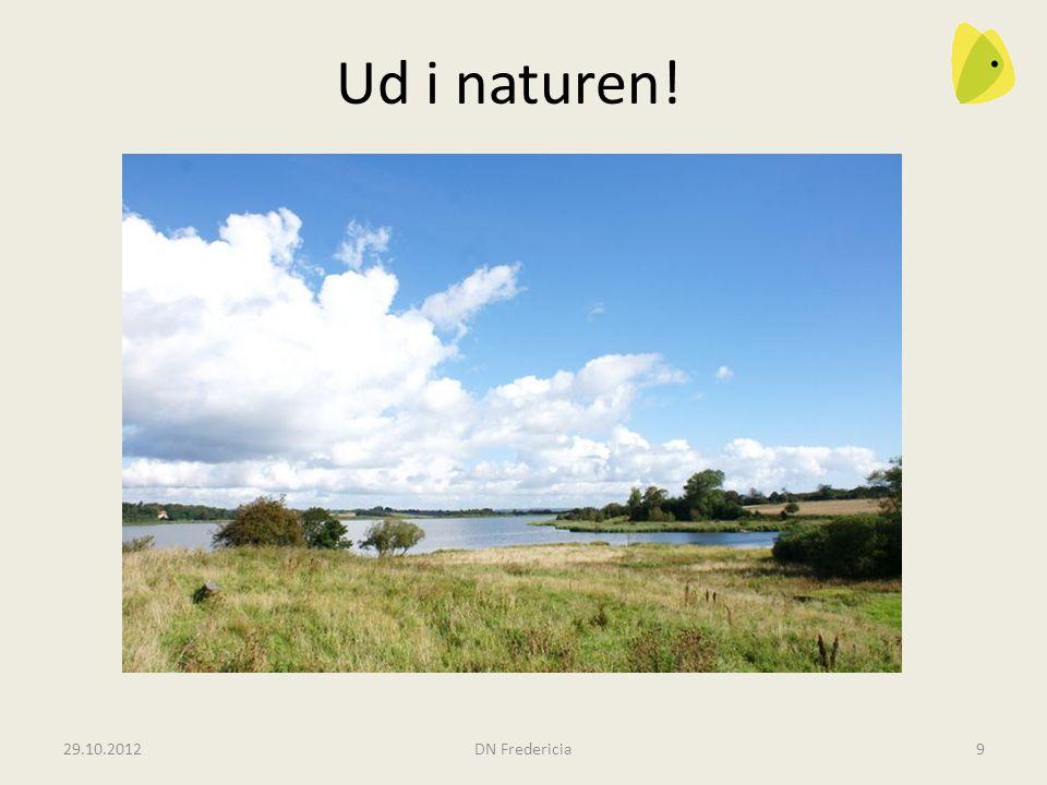 Ud i naturen! Rands Fjord og Fager Lien Måske havørne! 29.10.2012
