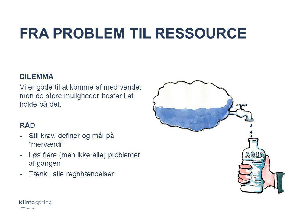 Fra problem til ressource