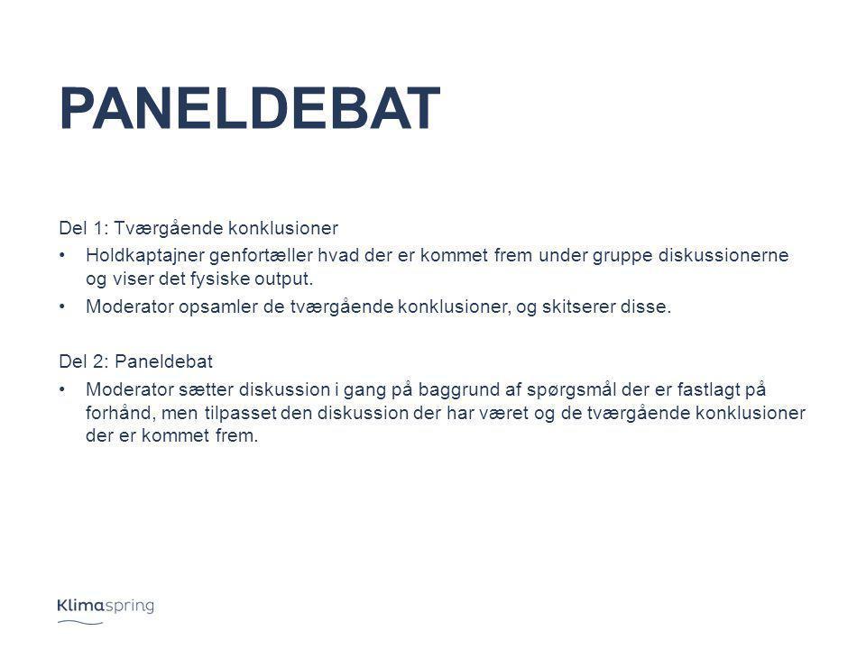 Paneldebat Del 1: Tværgående konklusioner