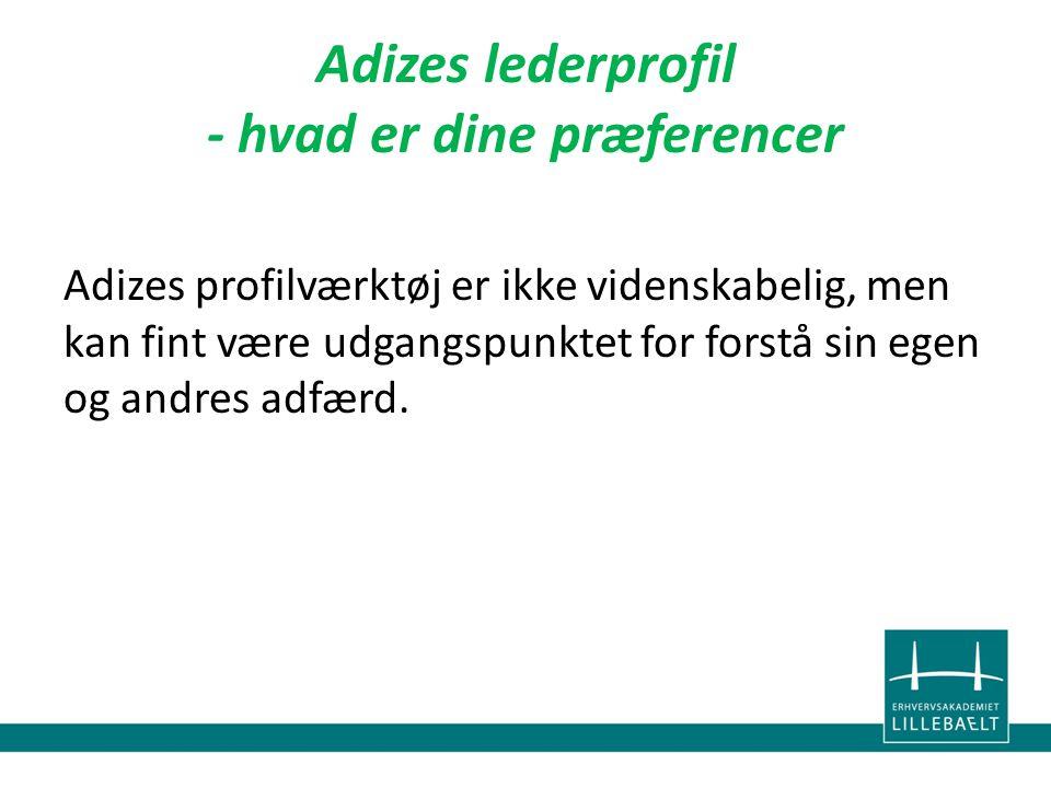 Adizes lederprofil - hvad er dine præferencer