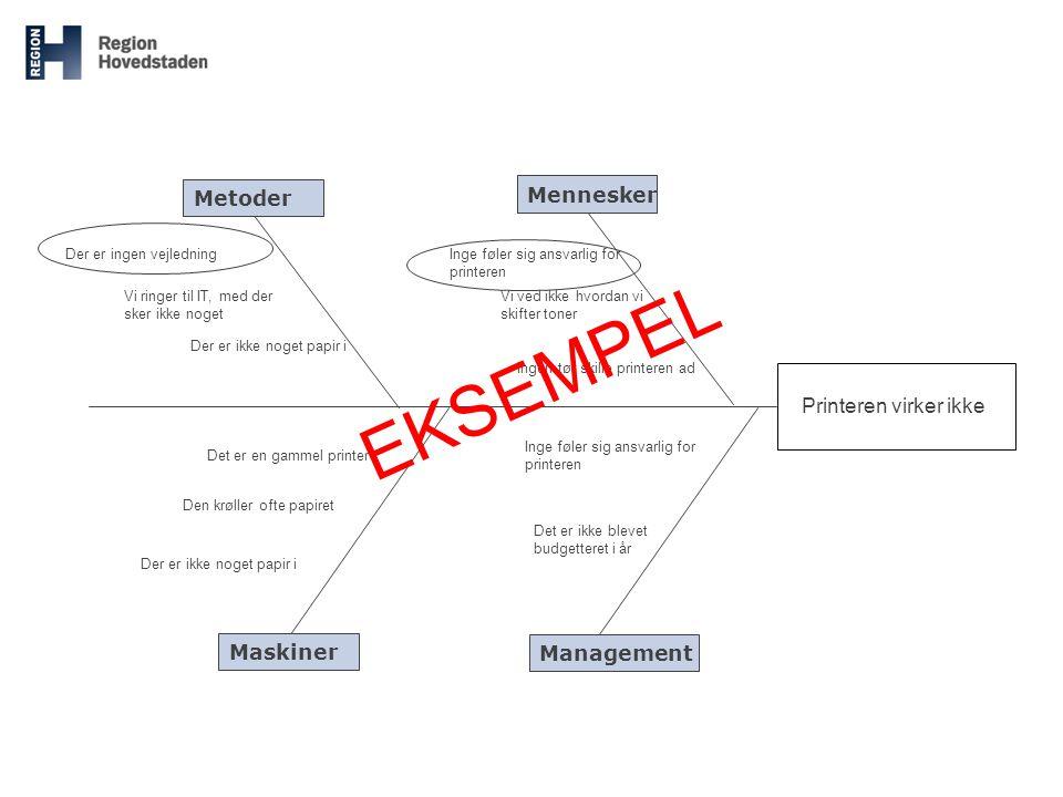 EKSEMPEL Metoder Mennesker Printeren virker ikke Maskiner Management