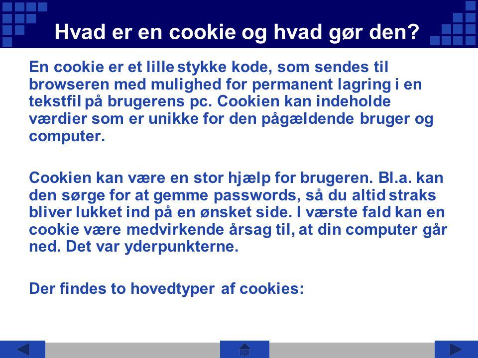 Hvad er en cookie og hvad gør den