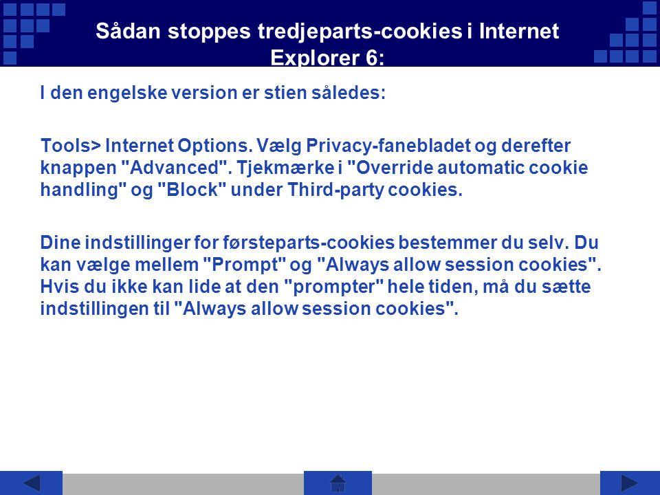Sådan stoppes tredjeparts-cookies i Internet Explorer 6: