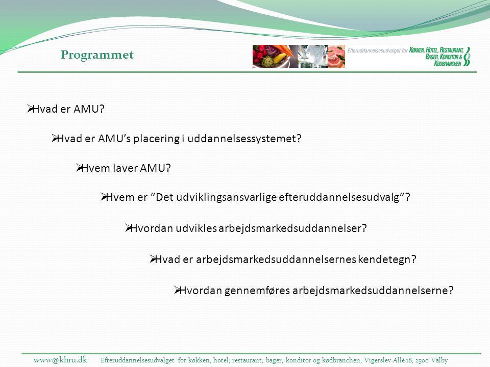Hvad er AMU's placering i uddannelsessystemet Hvem laver AMU