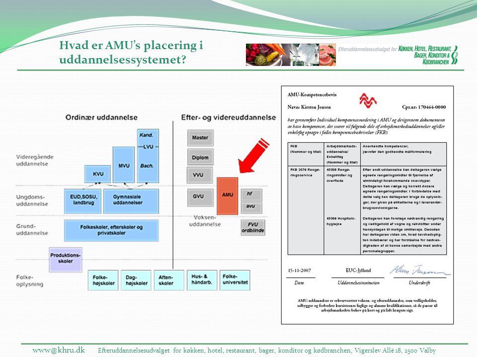 Hvad er AMU's placering i uddannelsessystemet