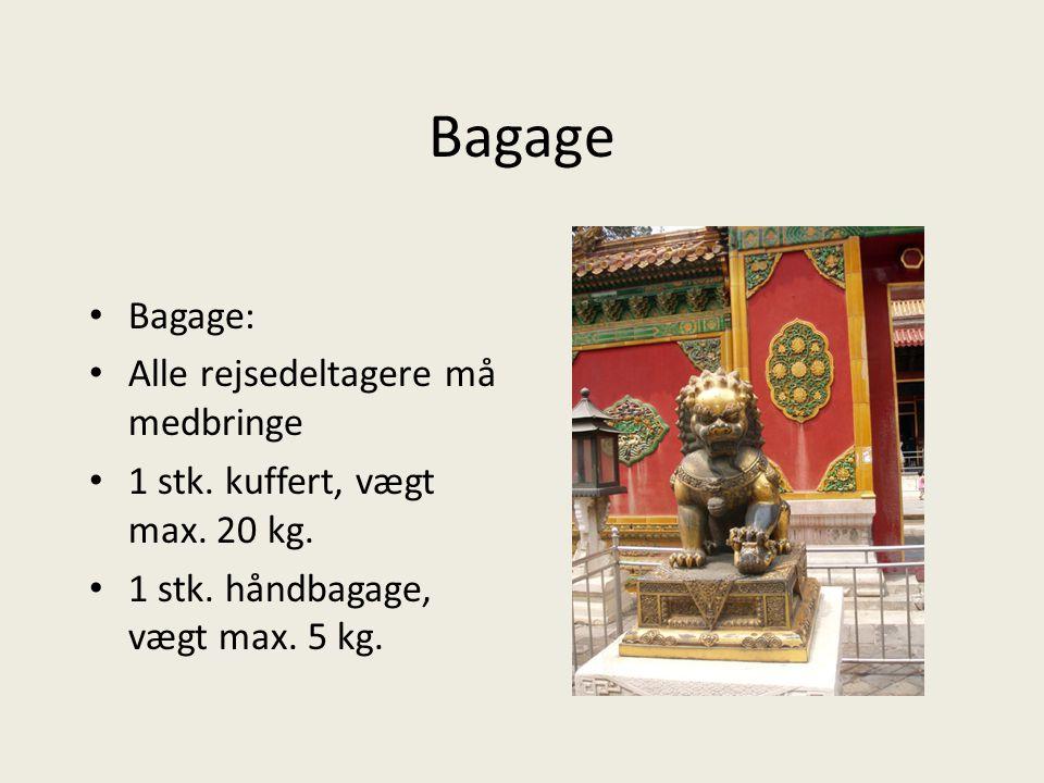 Bagage Bagage: Alle rejsedeltagere må medbringe