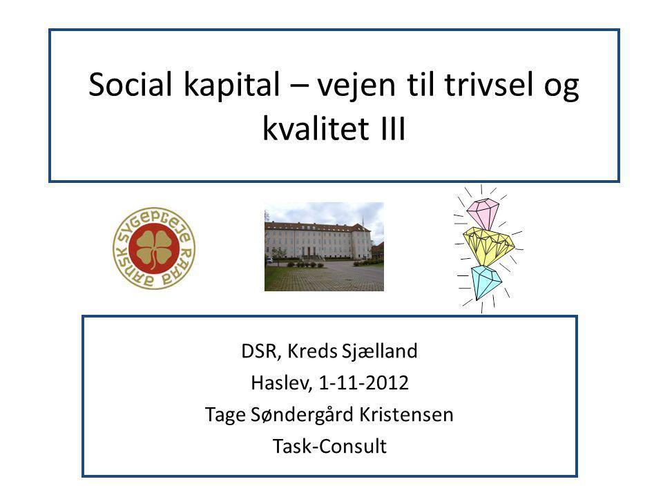 Social kapital – vejen til trivsel og kvalitet III
