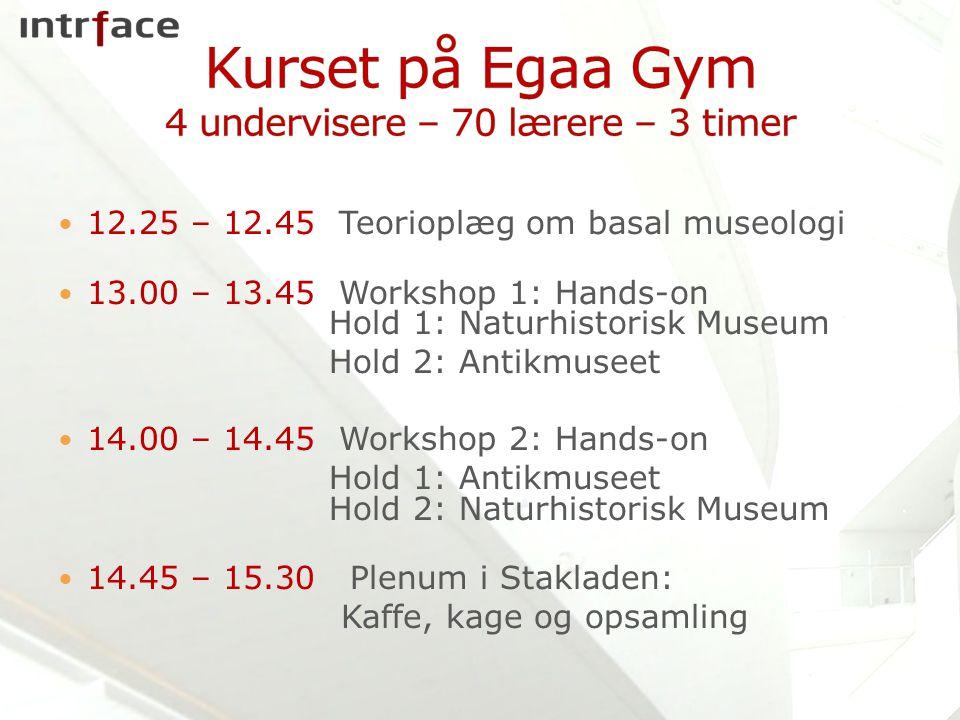 Kurset på Egaa Gym 4 undervisere – 70 lærere – 3 timer