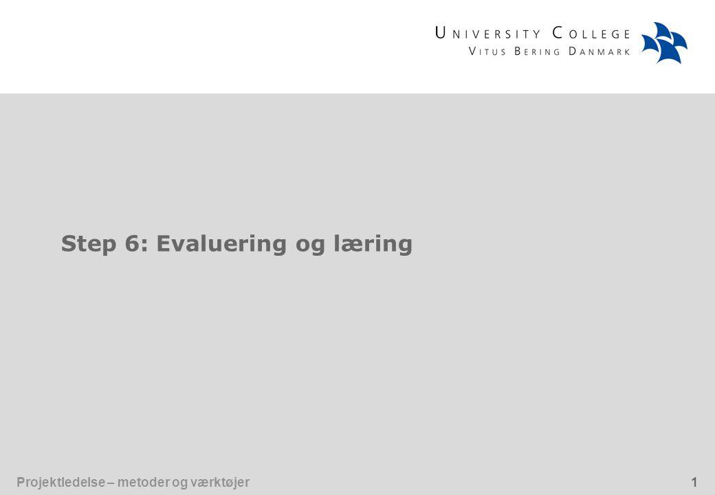 Step 6: Evaluering og læring