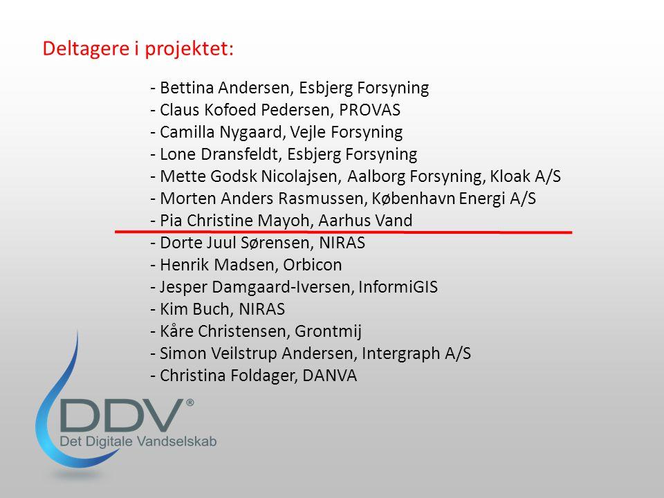 Deltagere i projektet:
