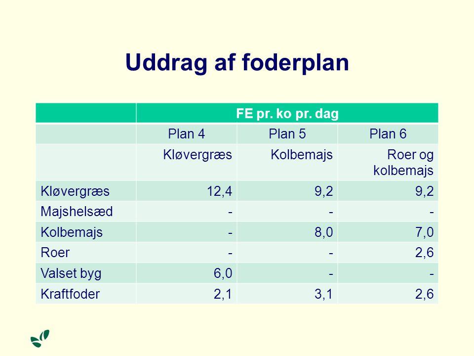 Uddrag af foderplan FE pr. ko pr. dag Plan 4 Plan 5 Plan 6 Kløvergræs