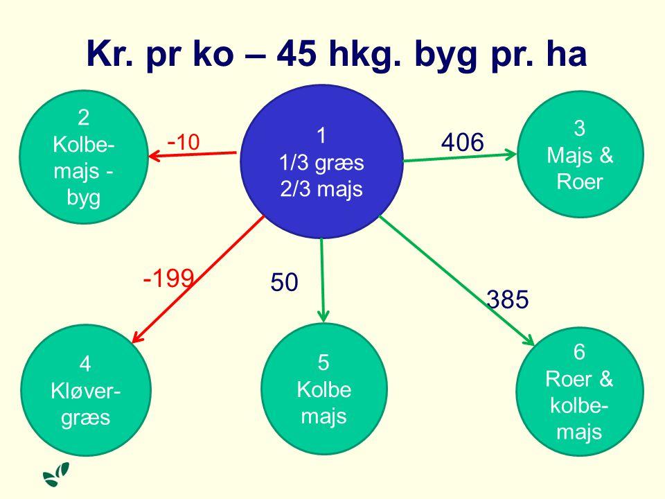 Kr. pr ko – 45 hkg. byg pr. ha -10 406 -199 50 385 2 Kolbe-majs - byg