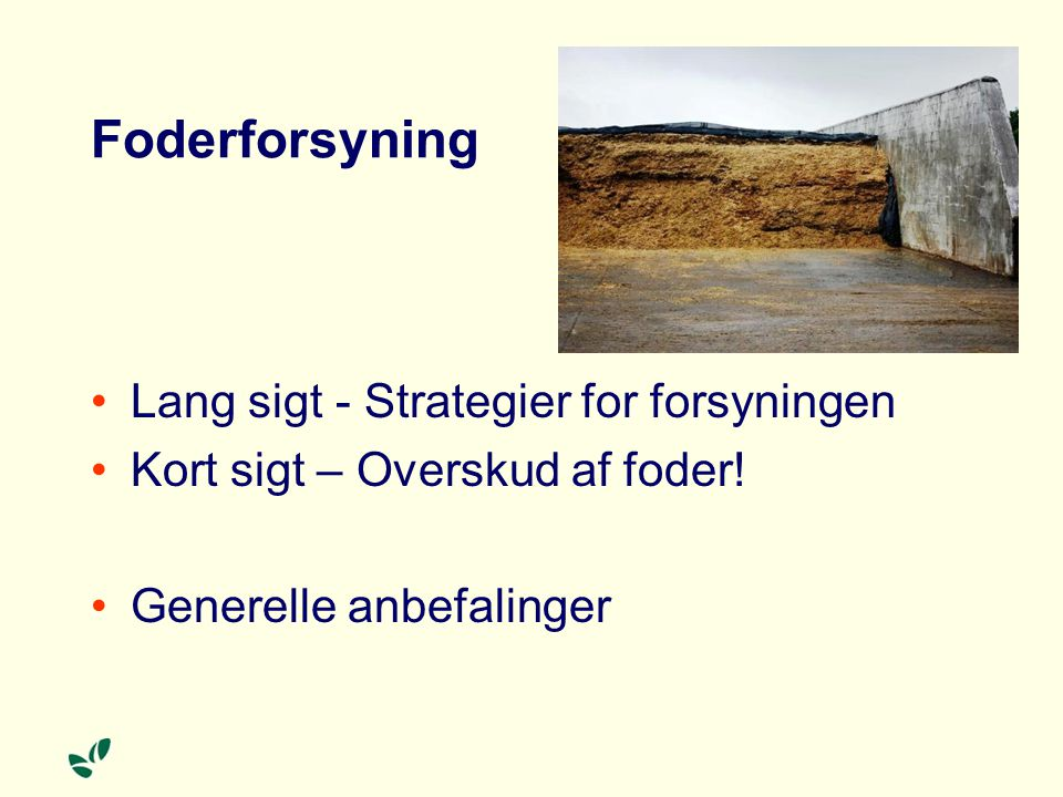 Foderforsyning Lang sigt - Strategier for forsyningen